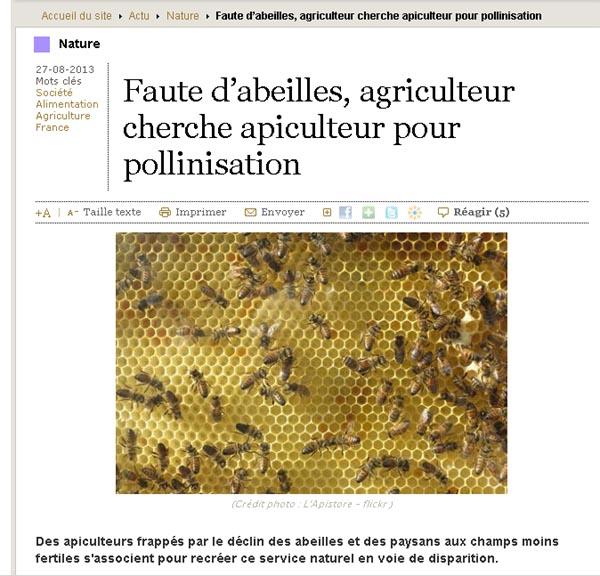 Location de ruches pour la pollinisation