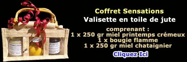 Coffret n°4 - Sensations - vente de miel