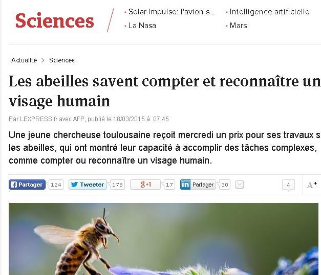 Les abeilles sont inteligentes